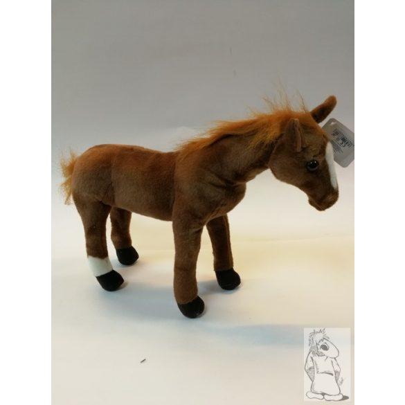 világos barna ló