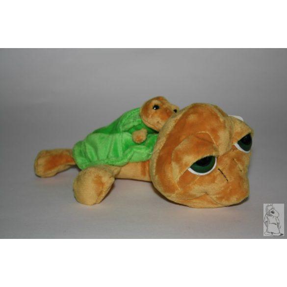 Bébis teknős zöld